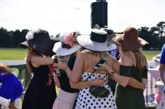 Hats Galore